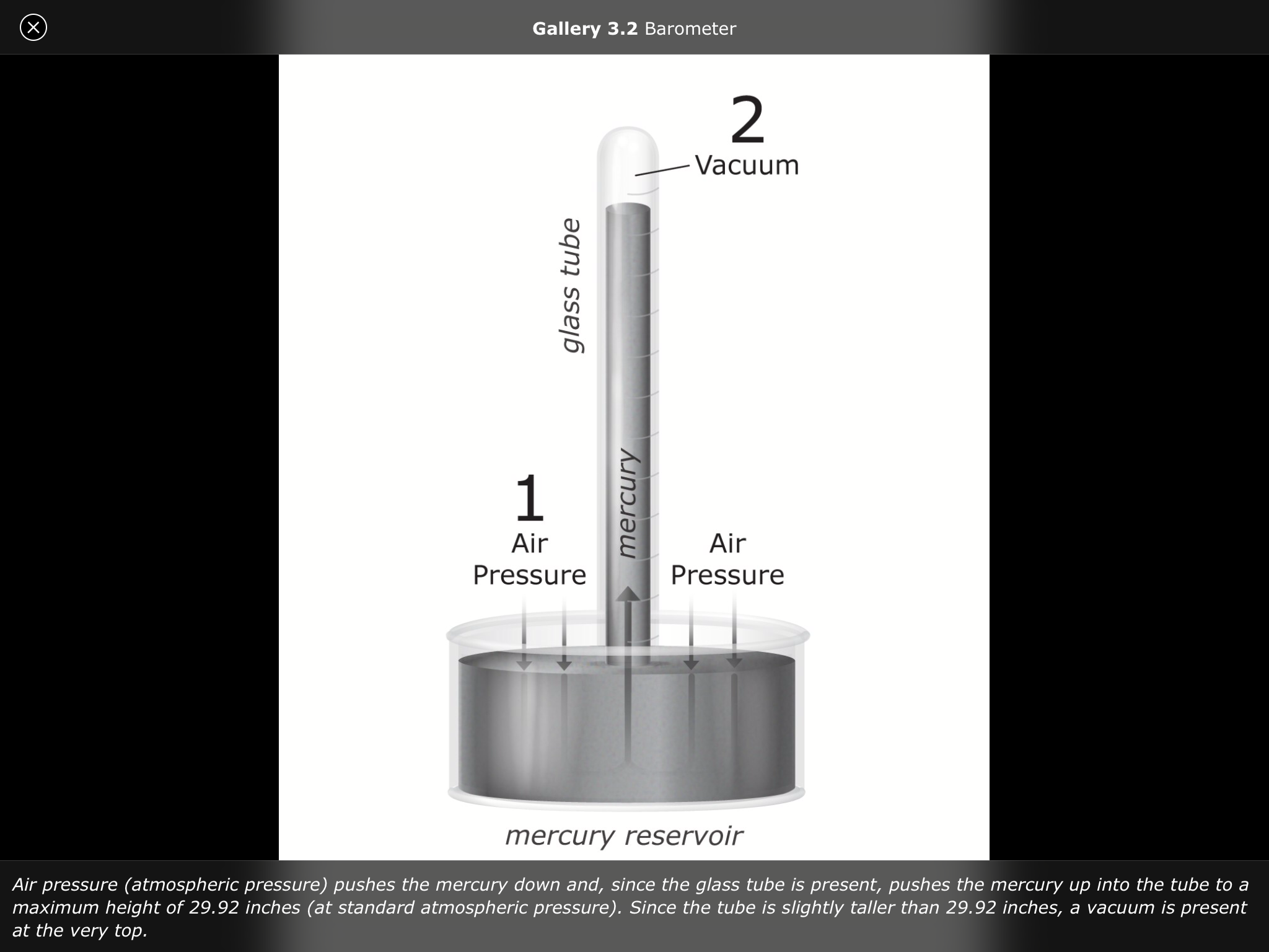 pdf Vision In Silver. 2016